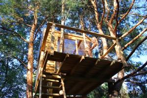 domek na drzewie 2